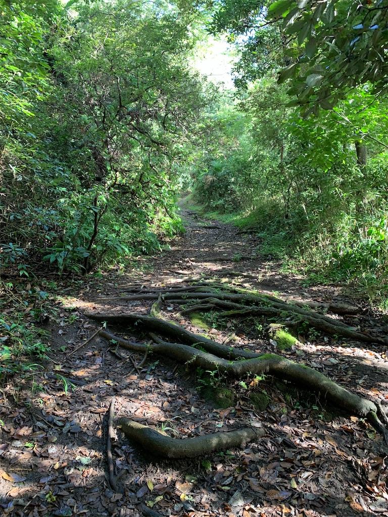 f:id:trail1048:20200904063642j:image