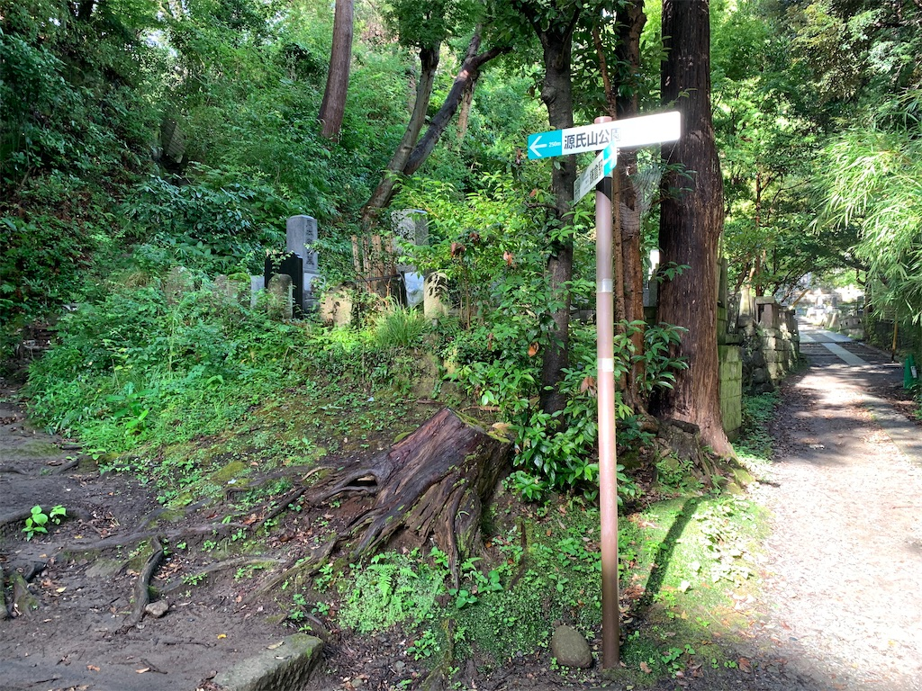 f:id:trail1048:20200904064414j:image