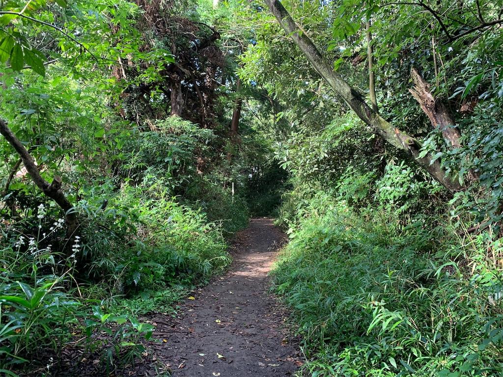 f:id:trail1048:20200904064422j:image