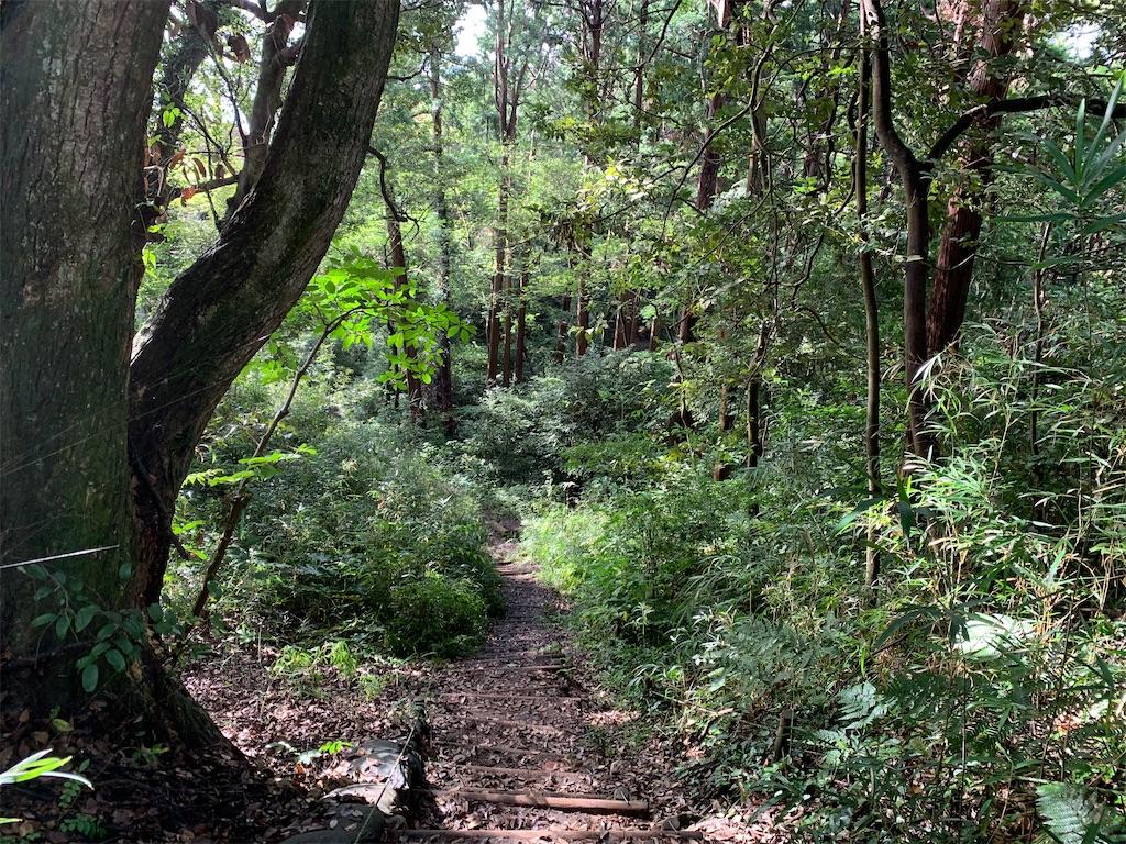 f:id:trail1048:20200904065032j:image