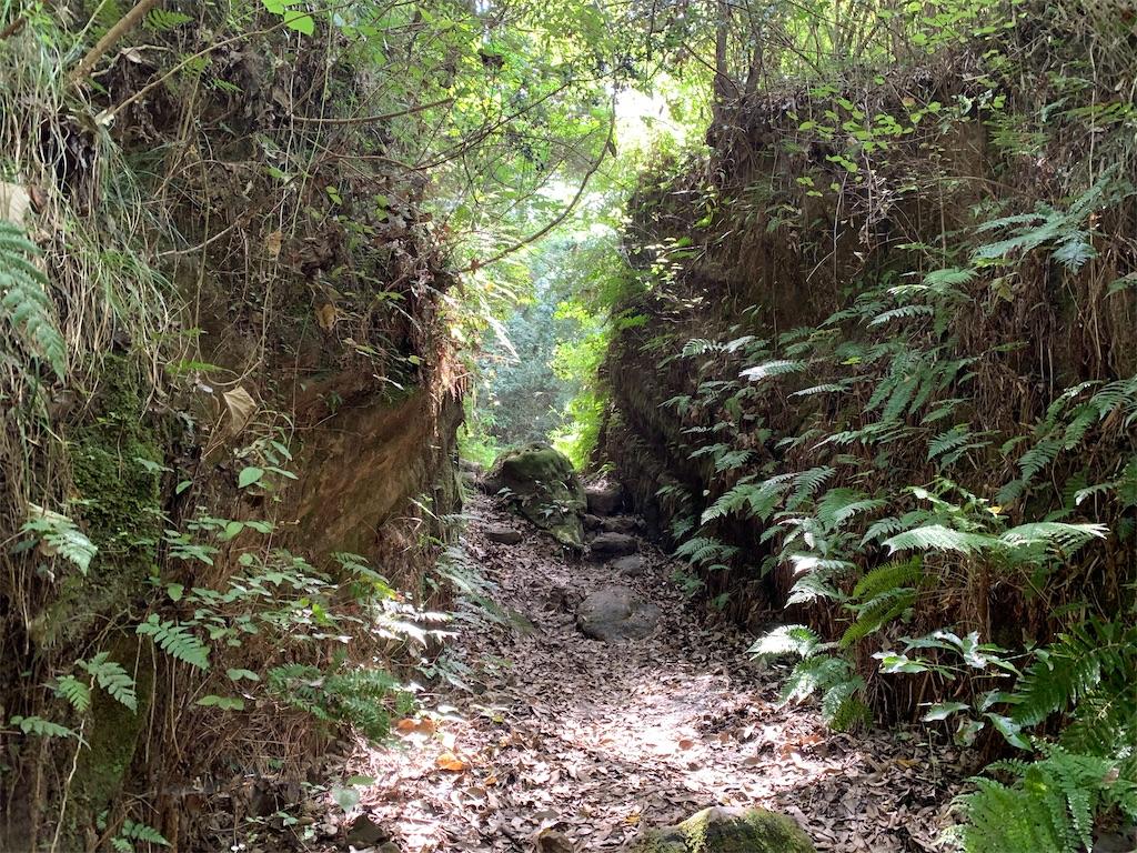 f:id:trail1048:20201004133402j:image