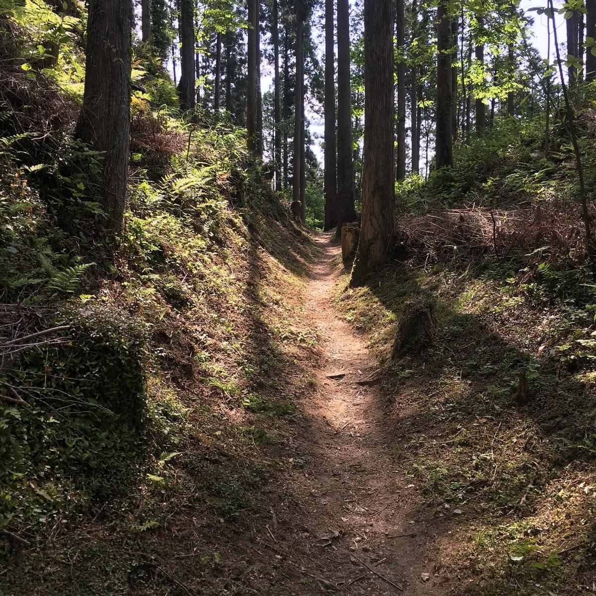f:id:trail7:20200608143341j:plain