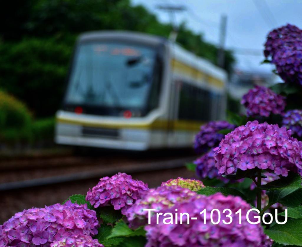 f:id:train-1031GoU:20180531144914j:plain
