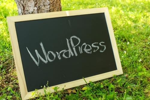 無料はてなブログは辞めて、一日でも早くWordPerssを始めよう