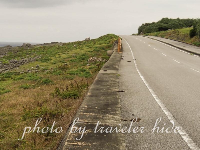 馬糞が多い与那国島の道路