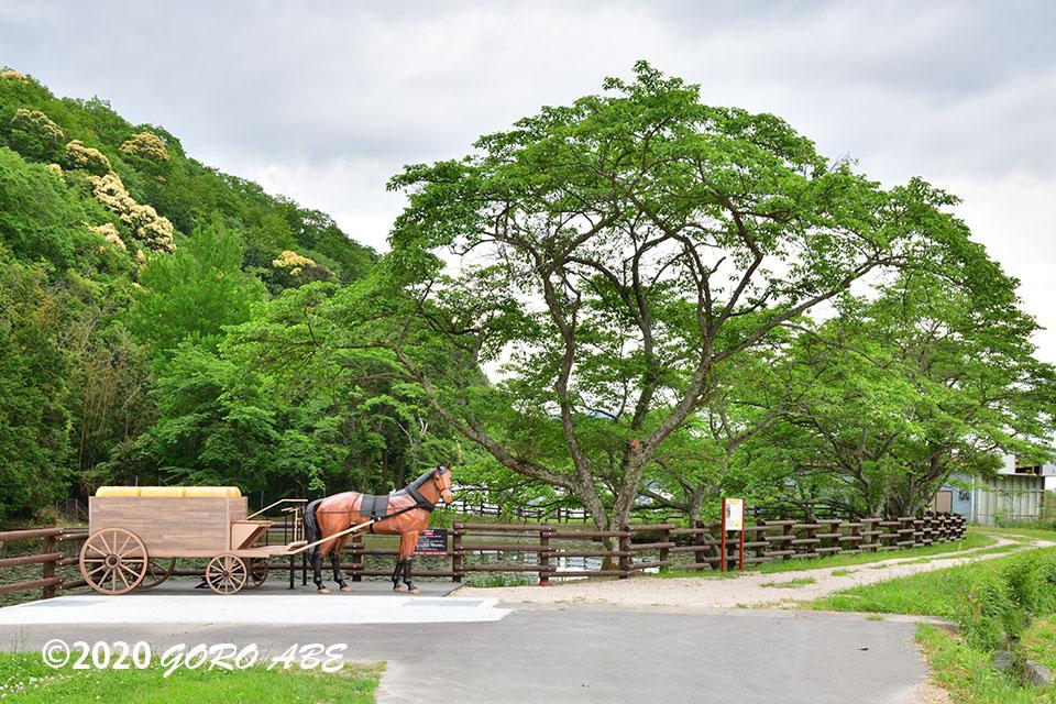 現存する銀の馬車道