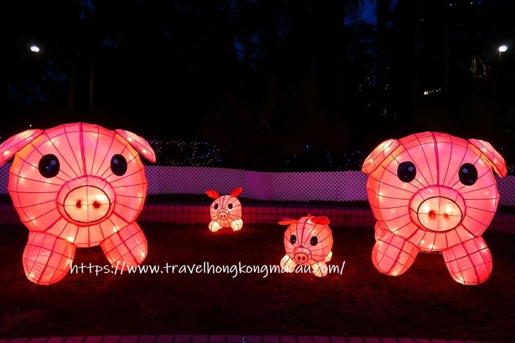 f:id:travelhongkongmacau:20190221190717j:plain
