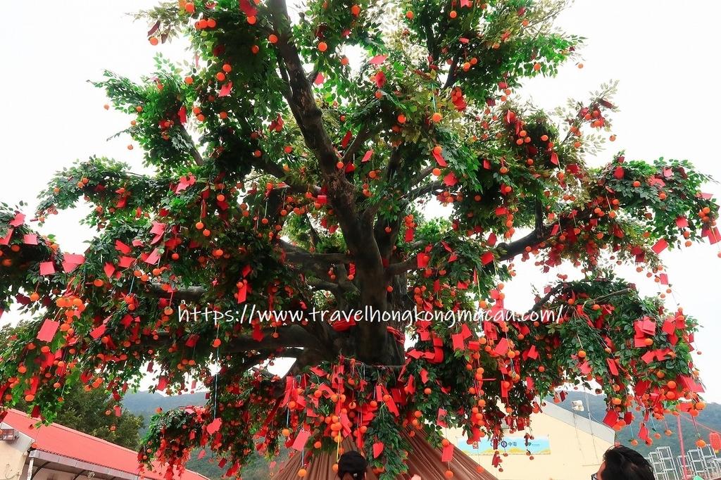 f:id:travelhongkongmacau:20190224165642j:plain