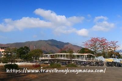 f:id:travelhongkongmacau:20190320224829j:plain