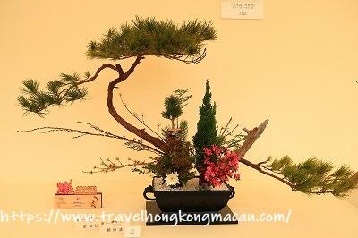 f:id:travelhongkongmacau:20190322105351j:plain