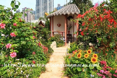 f:id:travelhongkongmacau:20190322110950j:plain