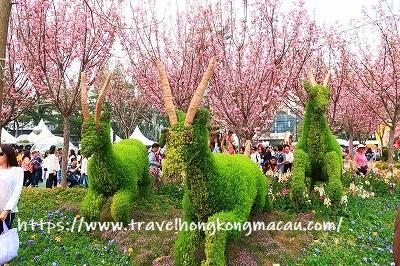 f:id:travelhongkongmacau:20190322113235j:plain
