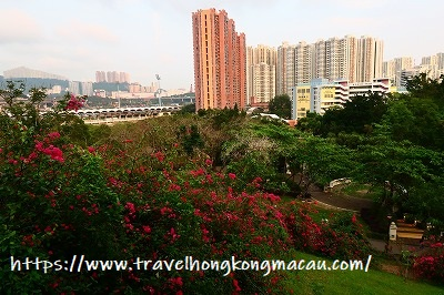 f:id:travelhongkongmacau:20190415112745j:plain