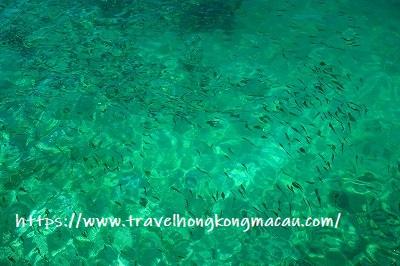 f:id:travelhongkongmacau:20190423233912j:plain