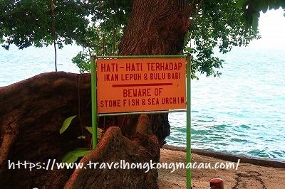 f:id:travelhongkongmacau:20190424000535j:plain