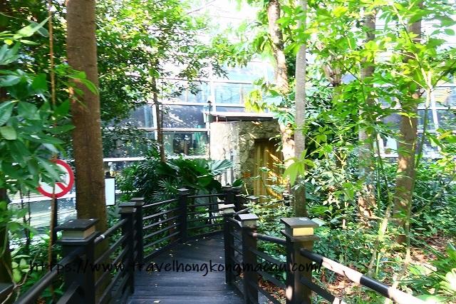 f:id:travelhongkongmacau:20191110222127j:plain