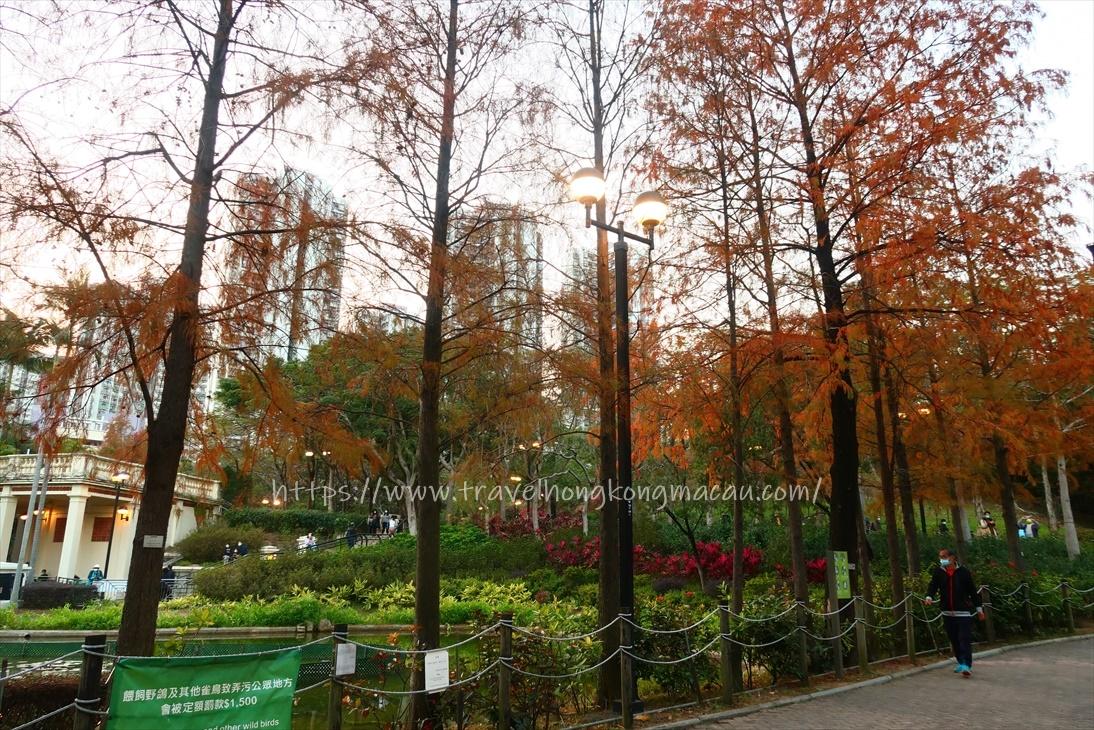 f:id:travelhongkongmacau:20210115230503j:plain