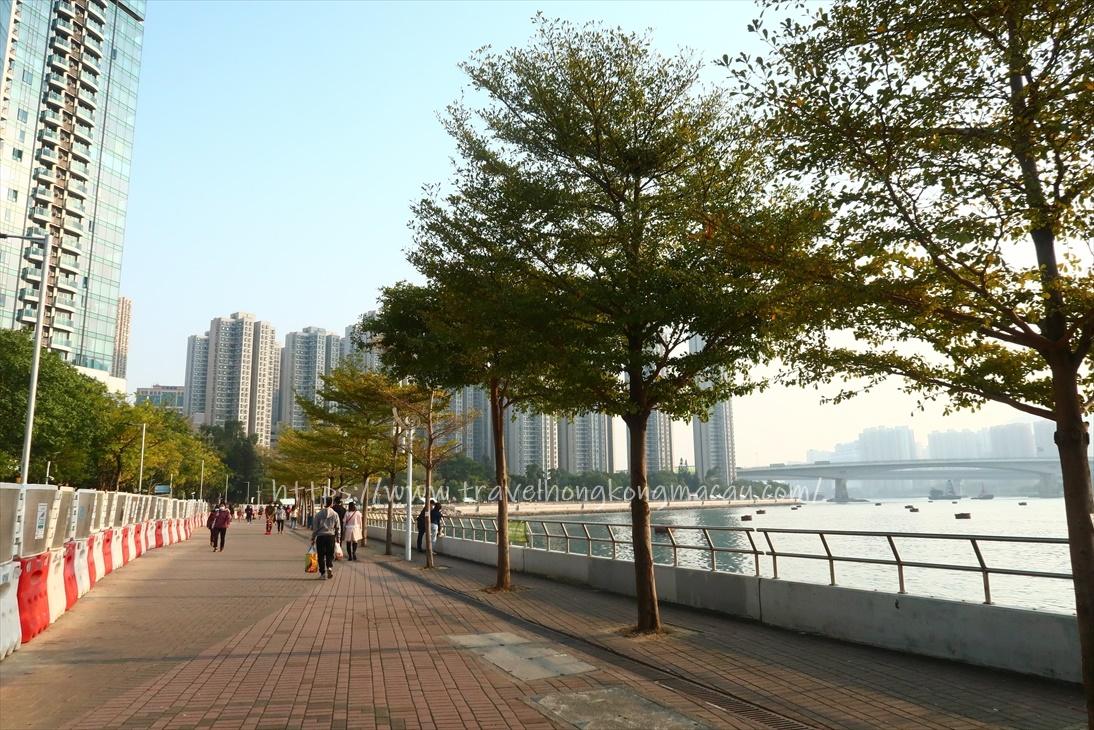 f:id:travelhongkongmacau:20210117211041j:plain