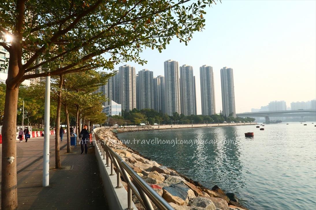 f:id:travelhongkongmacau:20210117211209j:plain