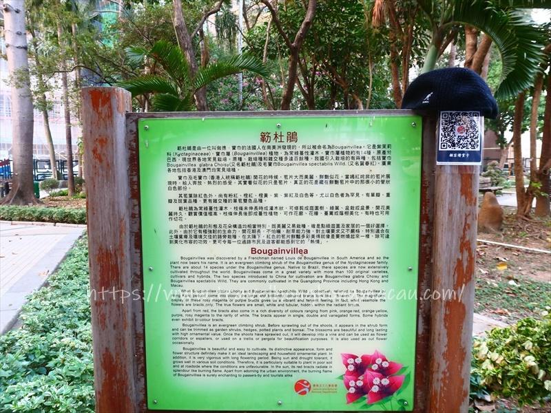 f:id:travelhongkongmacau:20210126231229j:plain
