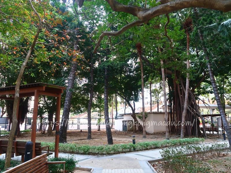 f:id:travelhongkongmacau:20210126231333j:plain