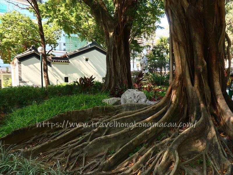 f:id:travelhongkongmacau:20210202161429j:plain