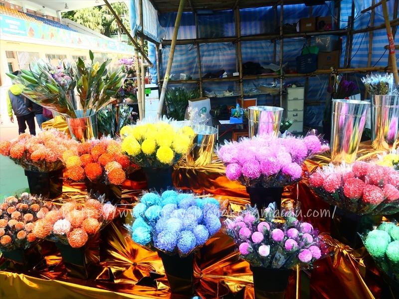 f:id:travelhongkongmacau:20210212015120j:plain