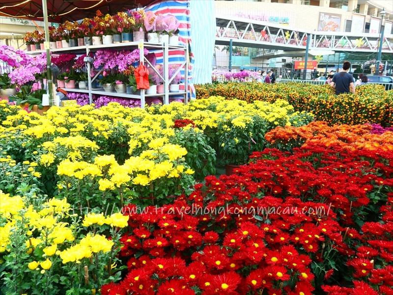 f:id:travelhongkongmacau:20210212015517j:plain