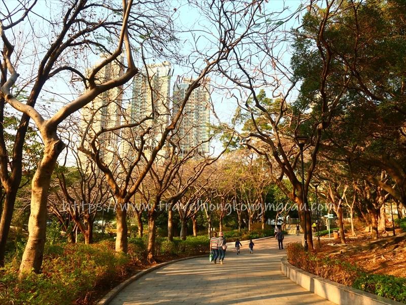 f:id:travelhongkongmacau:20210218182505j:plain