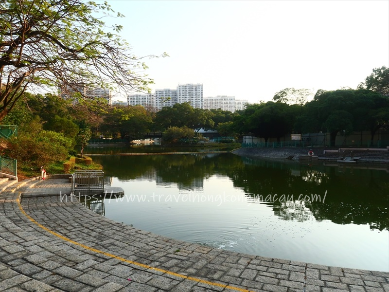 f:id:travelhongkongmacau:20210218182644j:plain