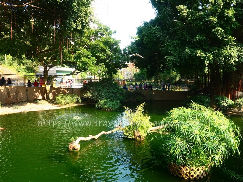f:id:travelhongkongmacau:20210223001023j:plain