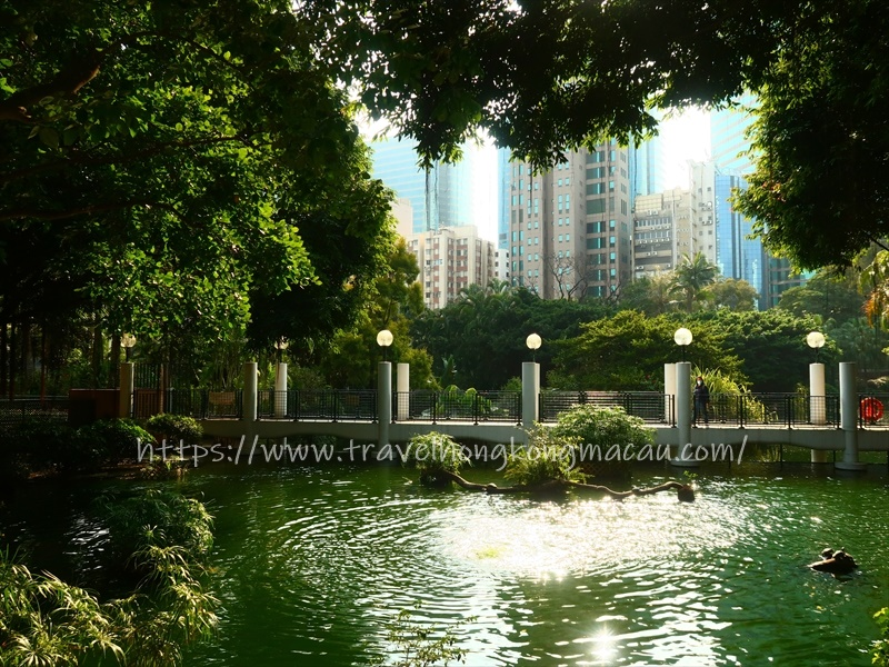 f:id:travelhongkongmacau:20210223001154j:plain
