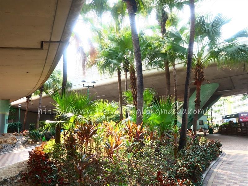 f:id:travelhongkongmacau:20210302175025j:plain