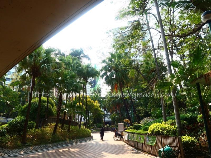 f:id:travelhongkongmacau:20210302175710j:plain