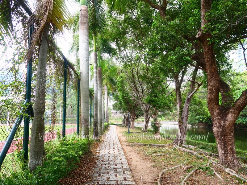 f:id:travelhongkongmacau:20210319130848j:plain