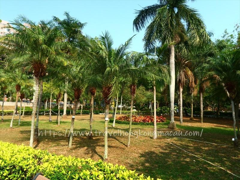 f:id:travelhongkongmacau:20210408085547j:plain