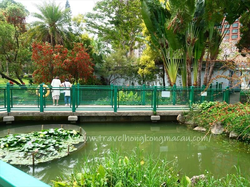 f:id:travelhongkongmacau:20210415002754j:plain
