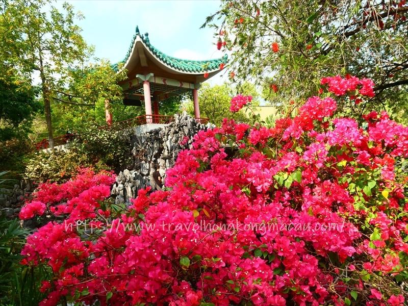 f:id:travelhongkongmacau:20210416105508j:plain