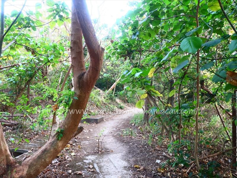 f:id:travelhongkongmacau:20210419133651j:plain