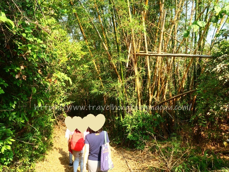 f:id:travelhongkongmacau:20210419133653j:plain