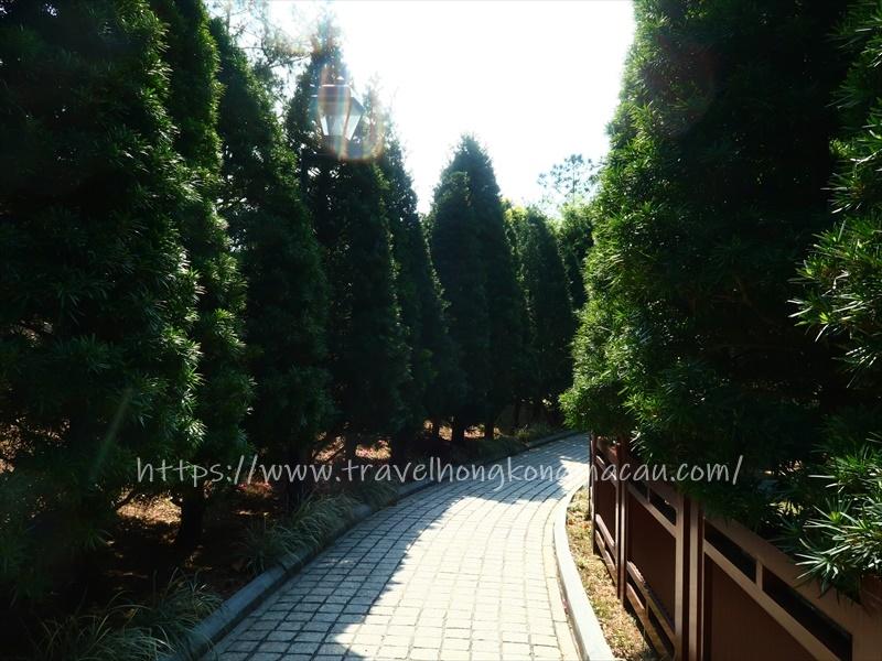 f:id:travelhongkongmacau:20210503175313j:plain