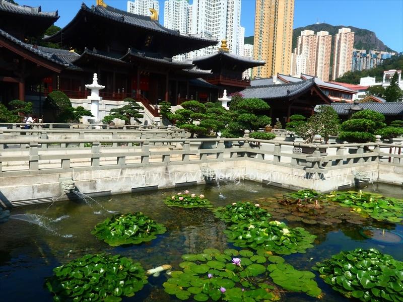 f:id:travelhongkongmacau:20210514111509j:plain
