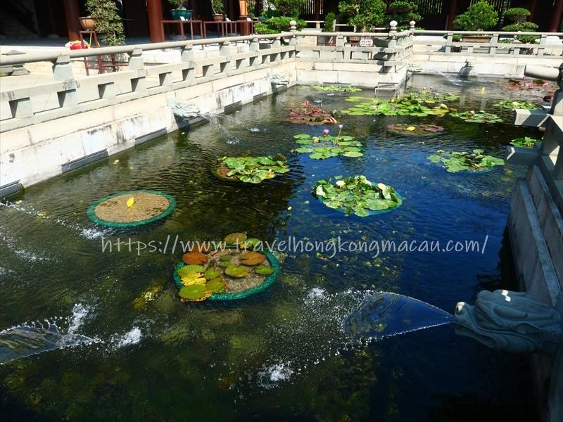 f:id:travelhongkongmacau:20210514112131j:plain