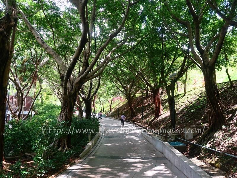 f:id:travelhongkongmacau:20210520182733j:plain