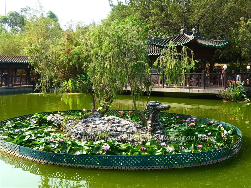 f:id:travelhongkongmacau:20210521184911j:plain