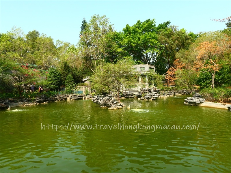 f:id:travelhongkongmacau:20210521185020j:plain
