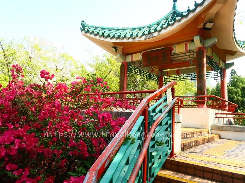 f:id:travelhongkongmacau:20210521185228j:plain
