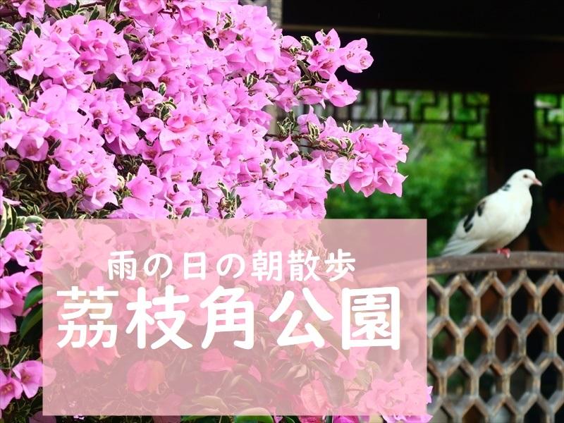 f:id:travelhongkongmacau:20210604123332j:plain