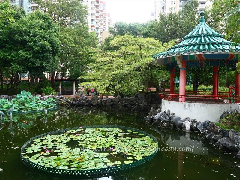 f:id:travelhongkongmacau:20210604144800j:plain
