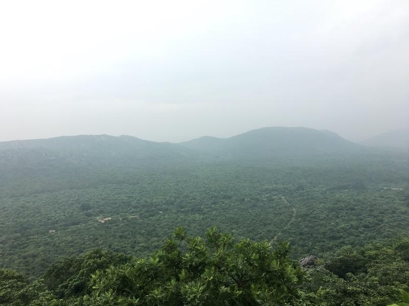f:id:travellingaroundindia:20200122012009j:plain